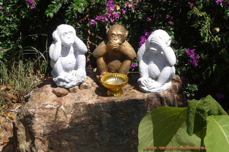 photo 21 English 3 wise monkeys, see no, speak no, hear no, in a temple  2 customers